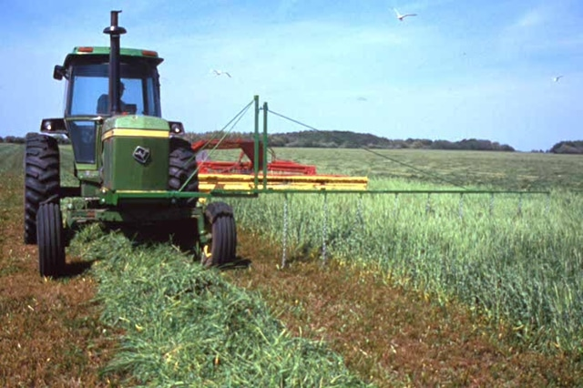 Tractor in field with flushing bars to scare wildlife. mowing, habitat, wildlife, rotational mowing, lawn, overwintering