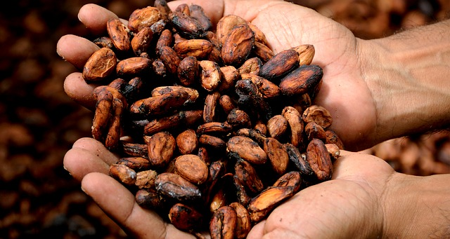 What is Fair Trade, and Does it Matter in Body Care?
