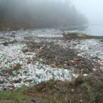 Plastic-Free February! Will You take the Challenge?