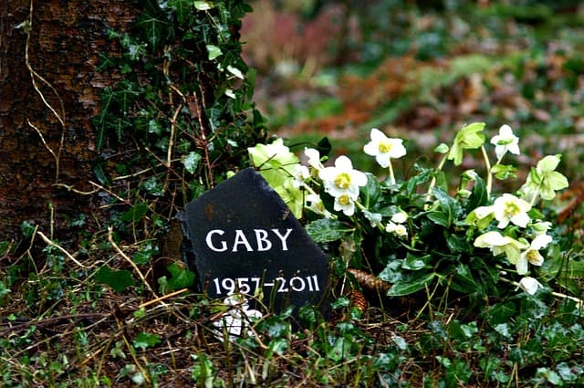natural burial green grave site